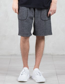 REIGNING CHAMP Tiger Terry Sweatshorts Picture