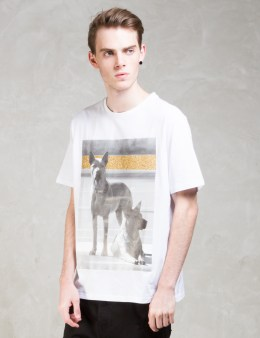 Palm Angels Glitter Dogs S/S T-Shirt Picture
