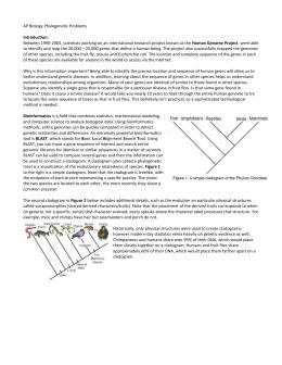 Cladistics And Bioinformatics Worksheet