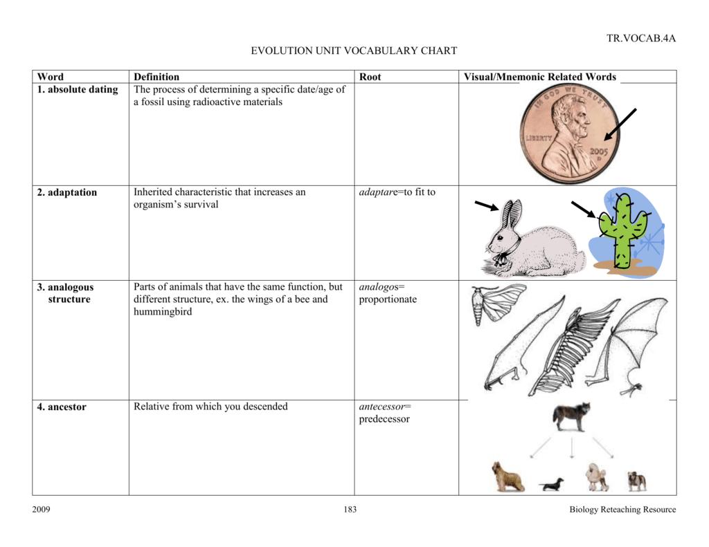 Bcps Biology Reteaching Guide Evolution Vocab Chart