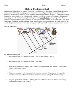 Cladograms And Phylogenic Trees