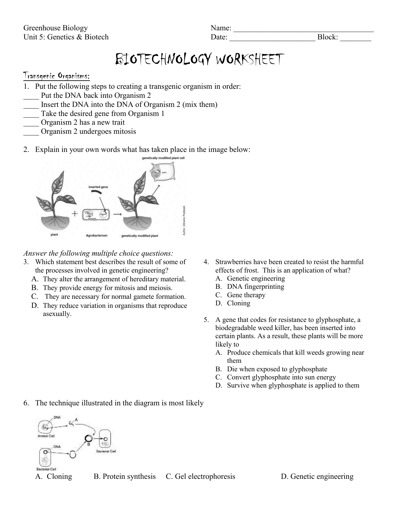 Biotechnology Worksheet