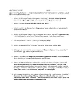 Genetics Problems Worksheet Simple Monohybrid Crosses A Simple