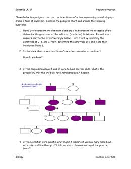 Practice Questions In Mendelian Genetics