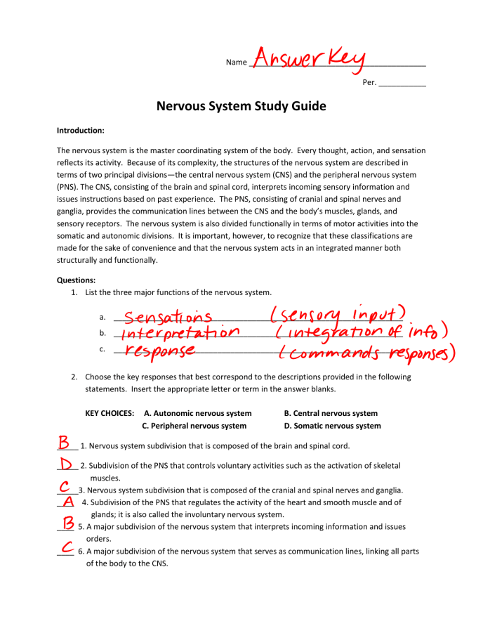 Anatomy And Physiology Coloring Workbook Chapter 7 Answer ...