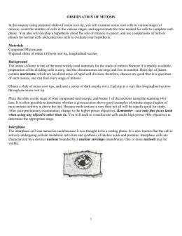 Leaf Anatomy Lab Answer Key | Zoshwiki.co