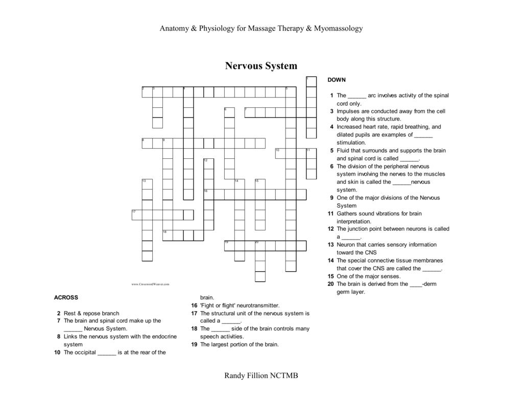 Nervous Crossword Puzzle