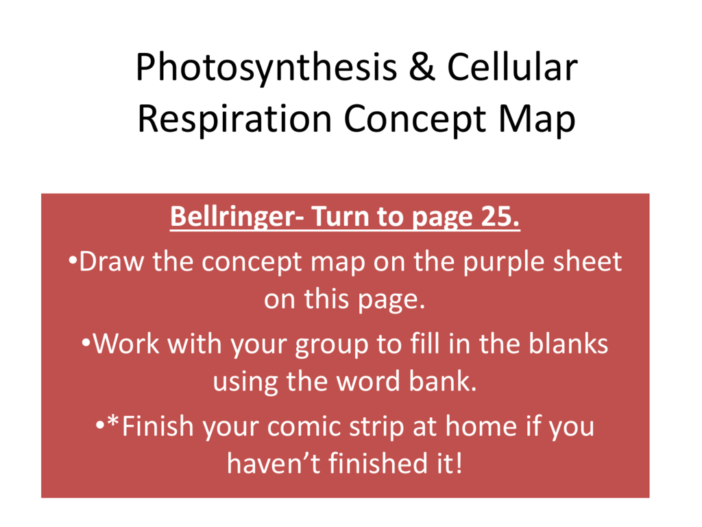 Photosynthesis Concept Map Blank