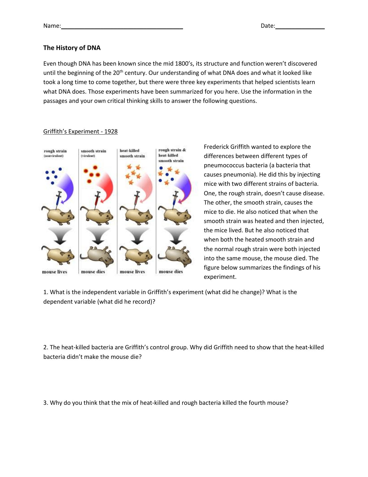 The History Of Dna Worksheet