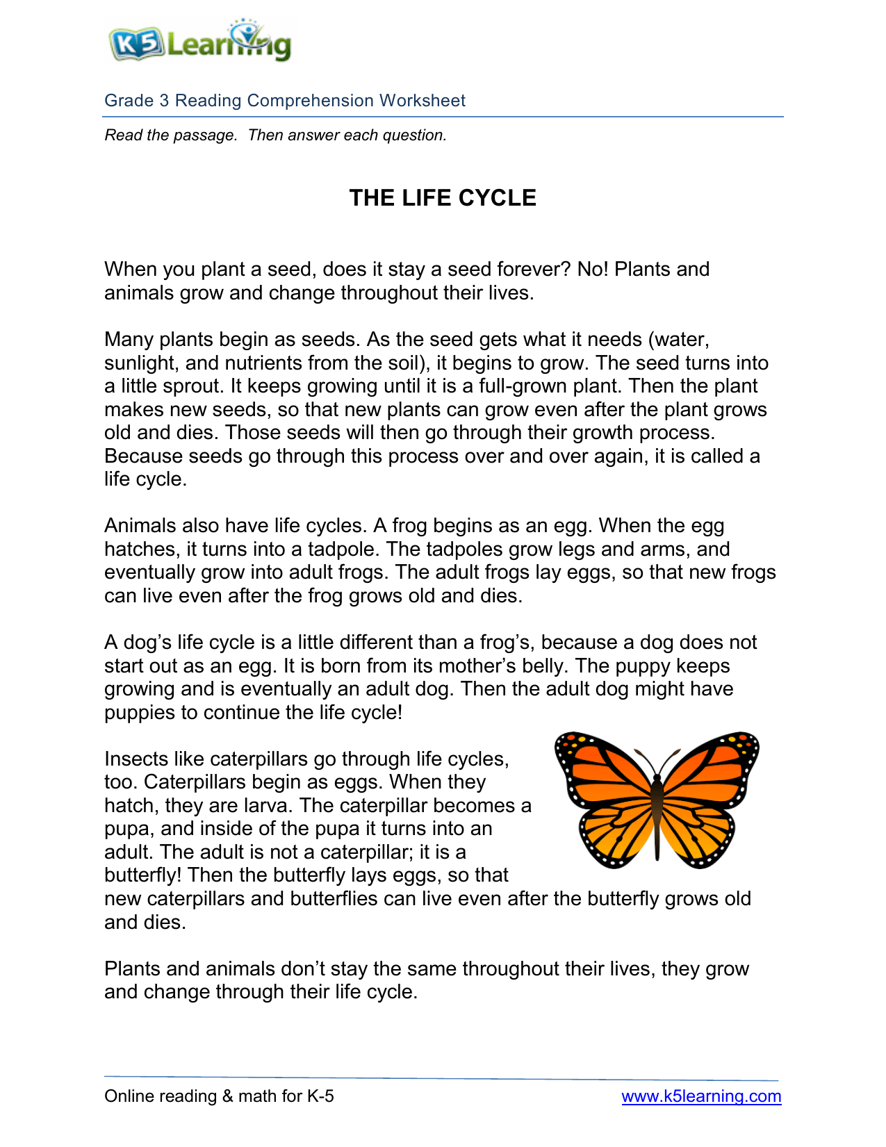 Plant Life Cycle Worksheet 3rd Grade