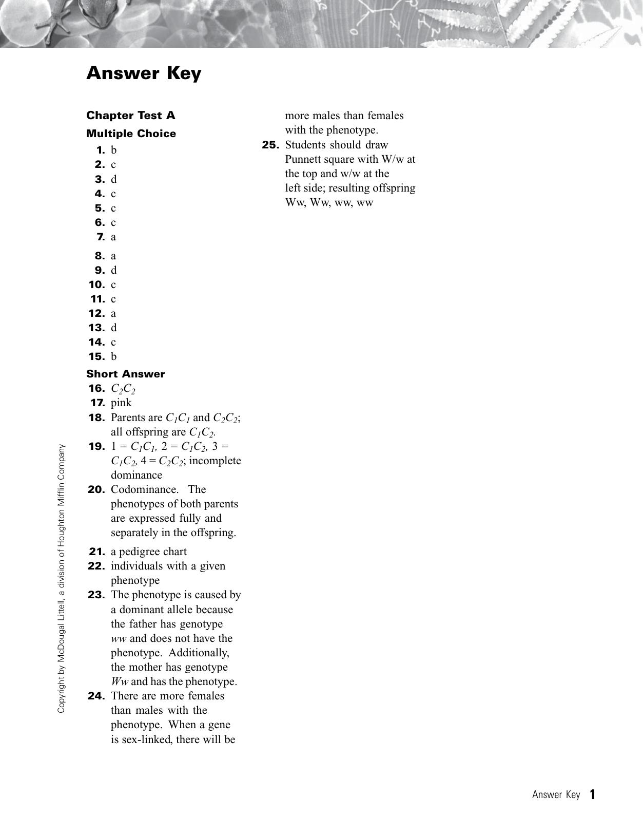 Holt Biology Chapter 7 Test A Answer Key