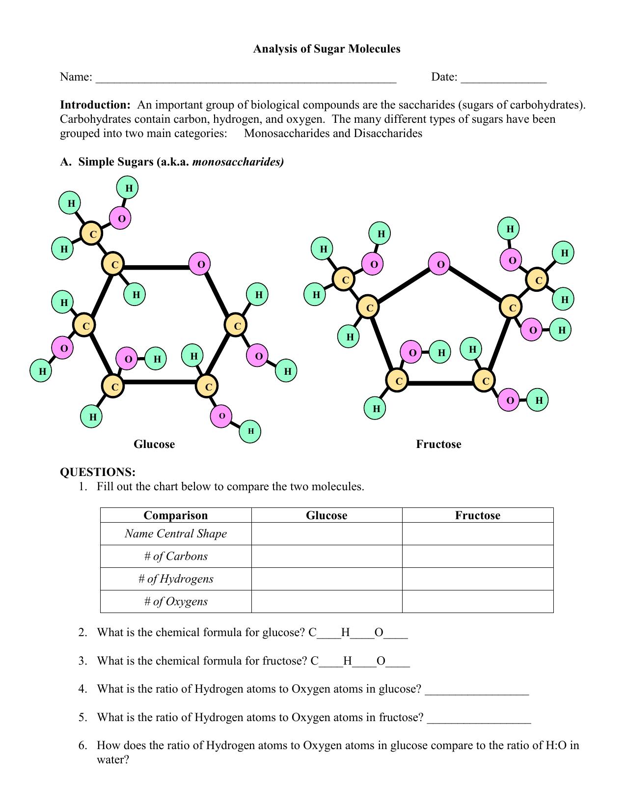 Sugar Molecules Worksheet