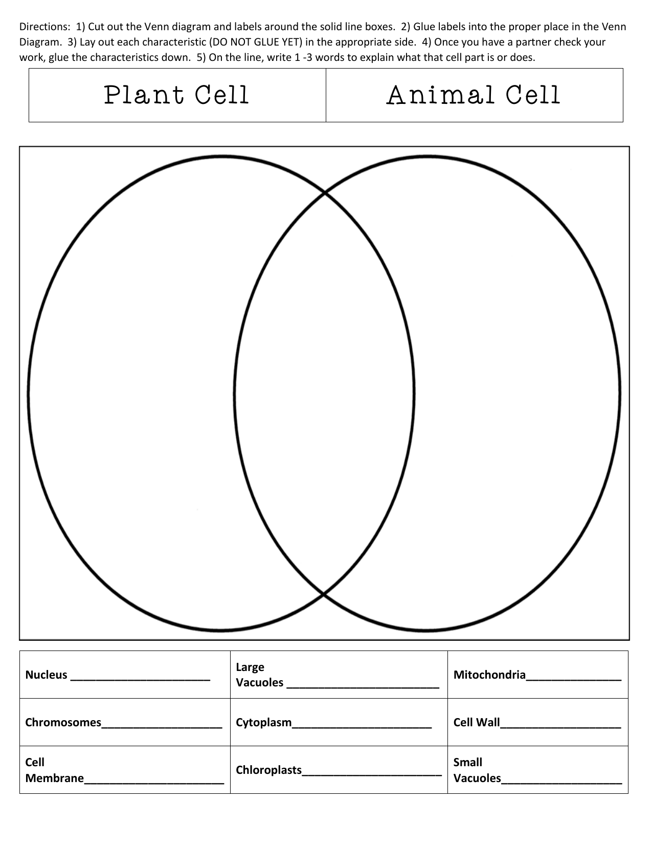 Compare And Contrast Plant And Animal Cells Sort