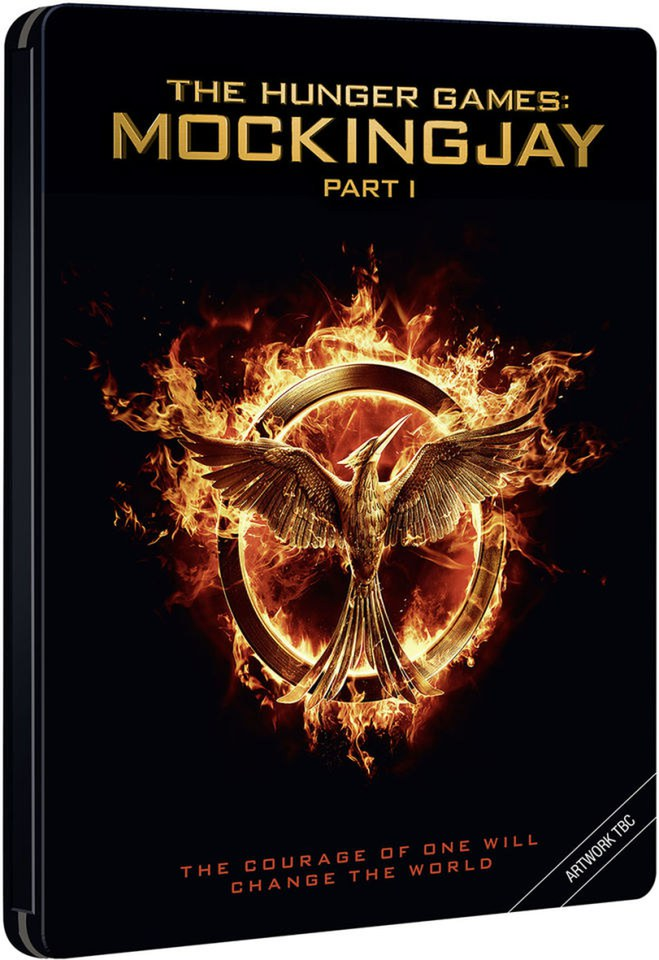Book Cover Fire 3 Wings