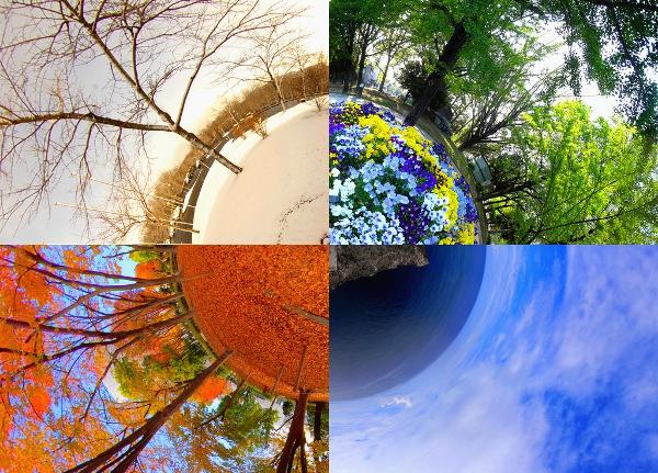 Imagini pentru the 4 seasons
