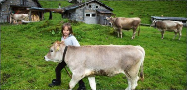 child-with-cow, raising kids in the country, country kids, raise country kids,keeping country kids safe around guns, kid friendly chickens, homesteading, homestead