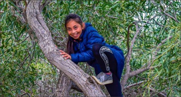 child climbing tree, raising kids in the country, country kids, raise country kids,keeping country kids safe around guns, kid friendly chickens, homesteading, homestead
