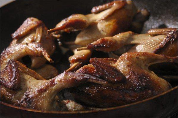 roasted quail, small-scale quail farming, popular quail breeds, Japanese quail, Bobwhite quail, homesteading