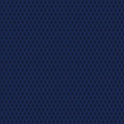 Cotton+Steel Basics - Mishmesh - Indigo Canvas Fabric