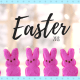 family photo, easter, holiday, diy, lifestyle, easter basket, do it yourself, crafty, easter jar, cup, carrot treat bag, rain boots basket, alternative, cake, candy, toys, kids, photo prop, ideas, inspiration, inspo, bunny, peeps, chocolate, fun, easy, creative, 2018, littleconquest, baby, toddler, little conquest