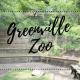 Greenville, SC, south carolina, upstate, things to do, with kids, Greenville Zoo, animals, exhibit, observatory, fun, family fun, family time, outside, outdoor, summer, entertainment, views, nature, places to go, places to see, educational, stroll, walk, exercise, venture, adventure, local, affordable, cheap, downtown, path, playground, park, children, 2018, year round, membership, different, worth it, parenting, motherhood, mom life, mom blogger, yeah that greenville, little conquest