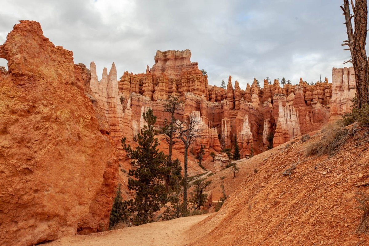 Queens Garden Trail Navajo Loop Combination Hike - Best Hike at Bryce Canyon National Park #vezzaniphotography