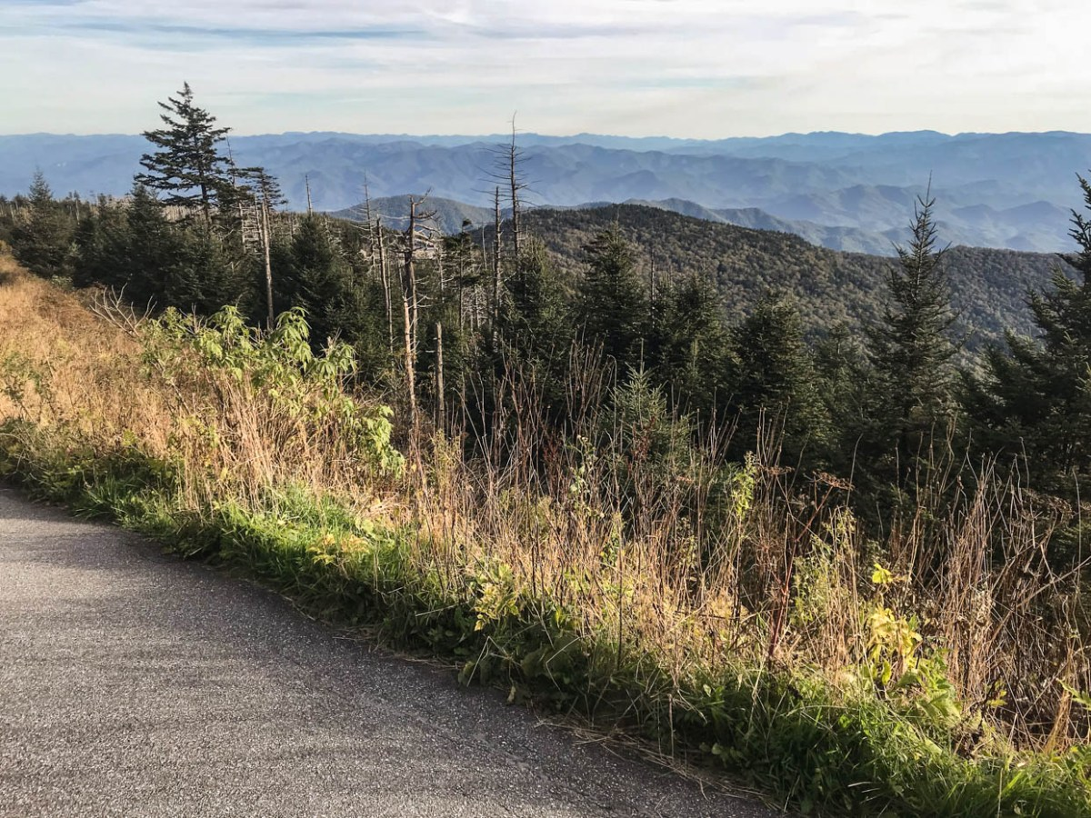 Hiking to the Clingmans Dome Observation Tower in the Great Smoky Mountains National Park #vezzaniphotography