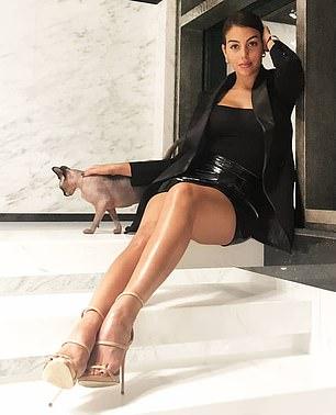 La modelo e influencer novia de Ronaldo, Georgina Rodríguez, de 27 años, decidió llevarse al gato con ella en un jet privado de regreso a España después de que fuera dado de alta de cuidados intensivos en el veterinario (en la foto: el gato se ha convertido en una estrella de su perfil de Instagram).