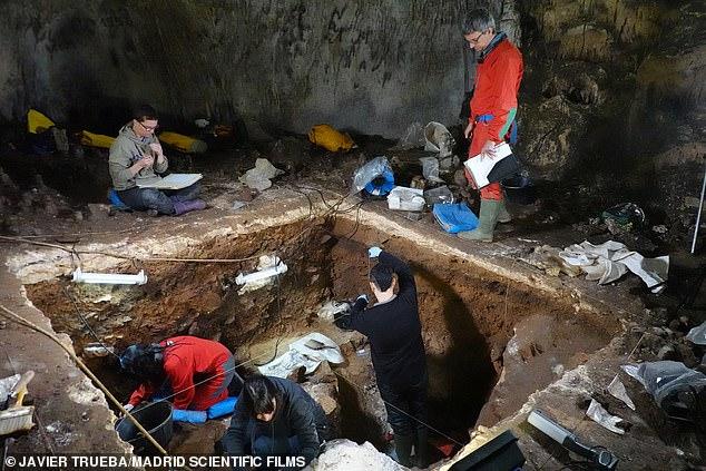 Uno de los sitios de la cueva, el sitio de la cueva Galería de las Estatuas en el norte de España, donde los investigadores pudieron extraer ADN neandertal a través del polvo de una cueva.