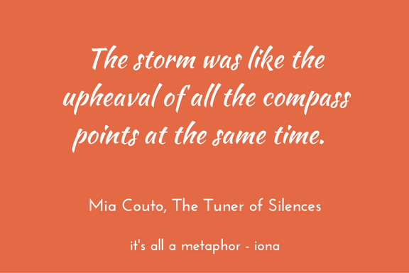 Mia Couto - Tuner of Silences metaphor