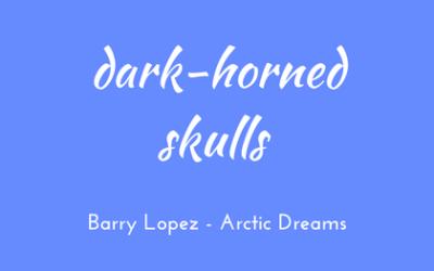Dark-horned skulls