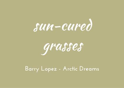 Barry Lopez Arctic Dreams