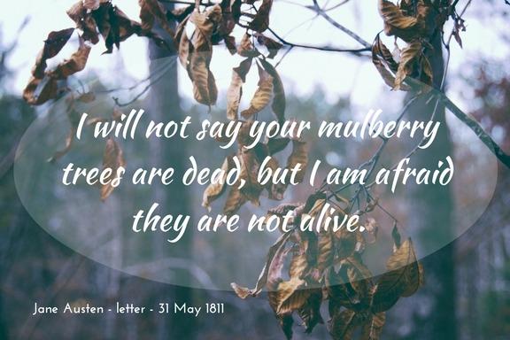 Jane Austen letter - mulberry trees