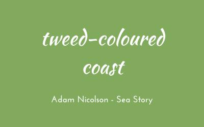 Tweed-coloured coast