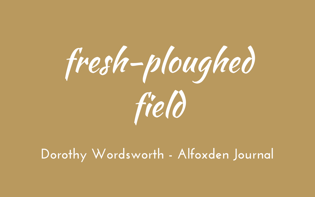 Dorothy Wordsworth - Alfoxden Journal