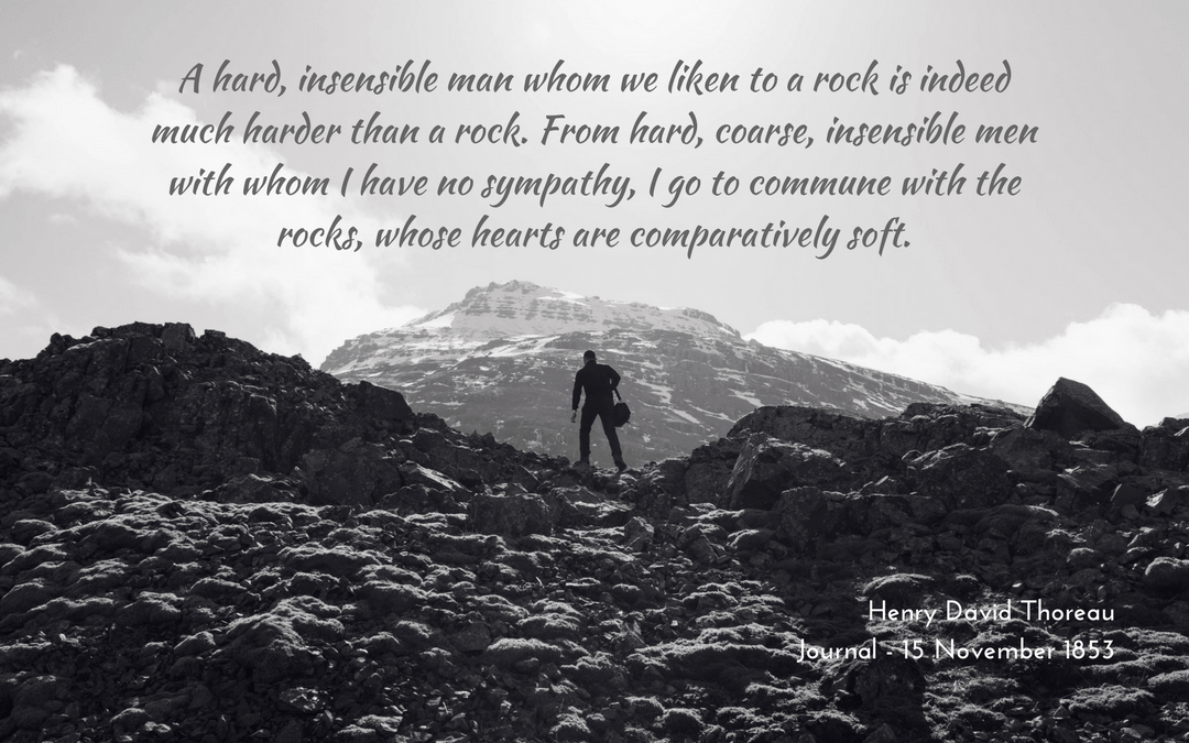 Henry David Thoreau - Journal