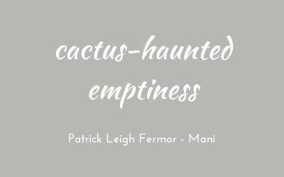 Cactus-haunted emptiness