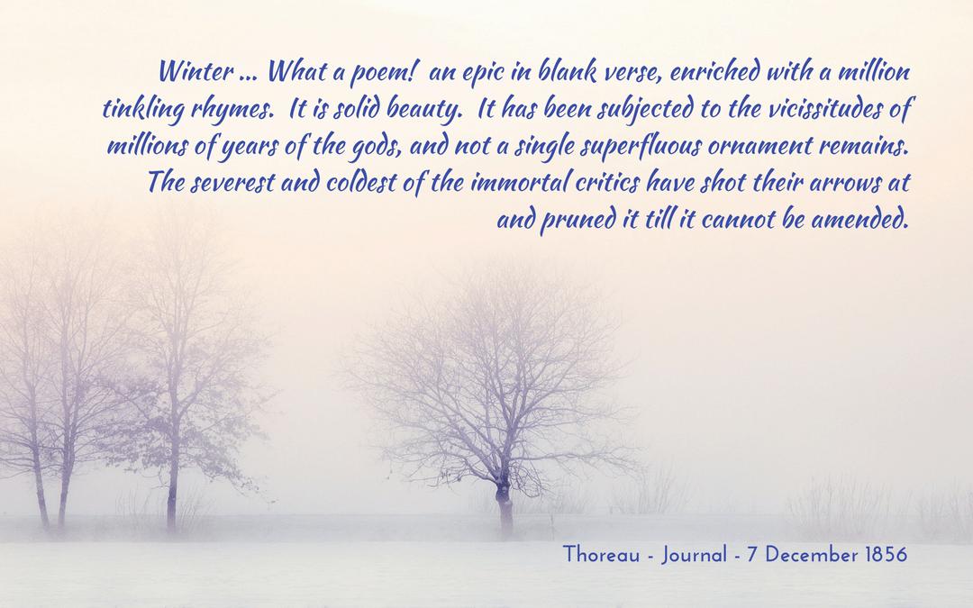Thoreau - Journal