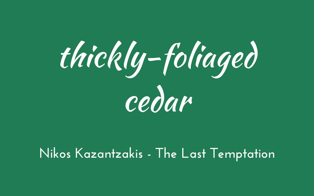 Thickly-foliaged cedar