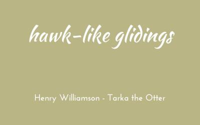 Hawk-like glidings