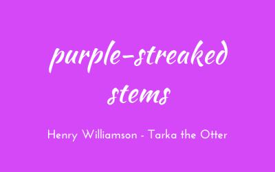 Purple-streaked stems