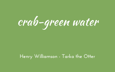 Crab-green water