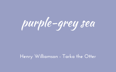 Purple-grey sea
