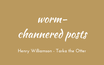 Worm-channered posts