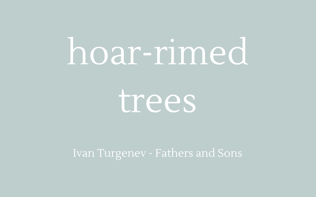 Quotation - Turgenev - Fathers and Sons