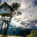 30 Whimsical Tree Houses That Will Make All Your Childhood Dreams Come True 22 Words