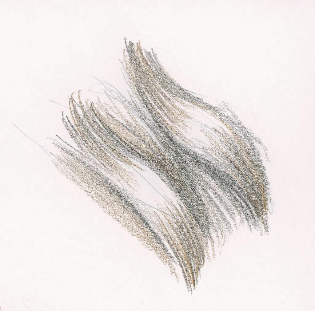 Demonstração de cabelo longo ondulado, etapa 2 | Lee Hammond | Desenho de cabelo para iniciantes em grafite e lápis de cor | Rede de Artistas