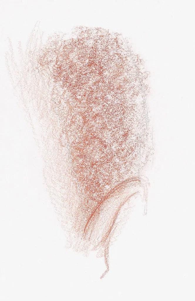 Demonstração do cabelo curto e encaracolado, etapa 2 | Lee Hammond | Desenho de cabelo para iniciantes em grafite e lápis de cor | Rede de Artistas