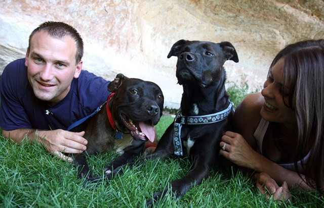 Cherry the Vicktory dog with his adoptive family