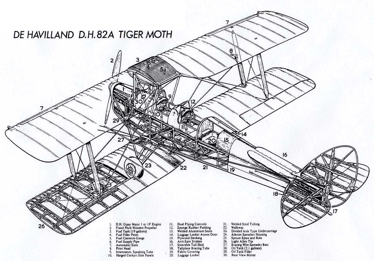 Looking For Structural Drawing And Info For Tigermoth